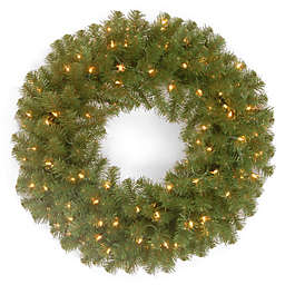 National Tree Company 24-Inch North Valley Spruce Wreath with Clear Lights