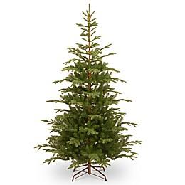 National Tree Company 7.5-Foot Norwegian Spruce Christmas Tree