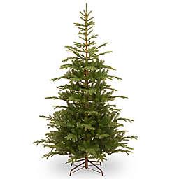 national tree company 75 foot norwegian spruce christmas tree