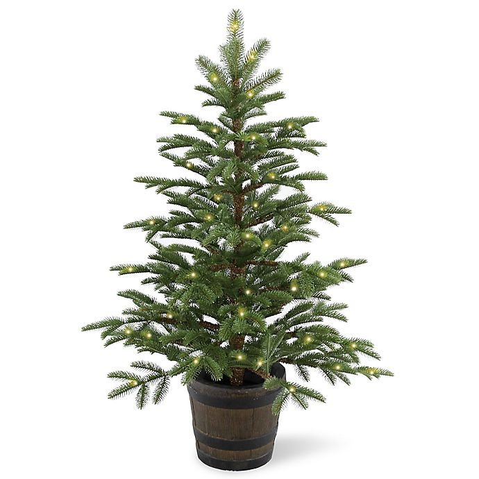 Alternate image 1 for National Tree Company 4-Foot Norwegian Spruce Pre-Lit Entrance Tree with Clear Lights