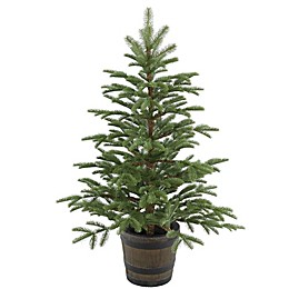 National Tree Company 4-Foot Norwegian Spruce Entrance Tree