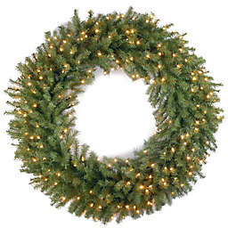 National Tree Company 42-Inch Pre-Lit Norwood Fir Wreath with Clear Lights