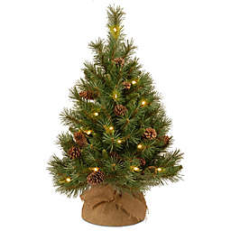 National Tree Company 3-Foot Pine Cone Tree with Warm White LED Lights