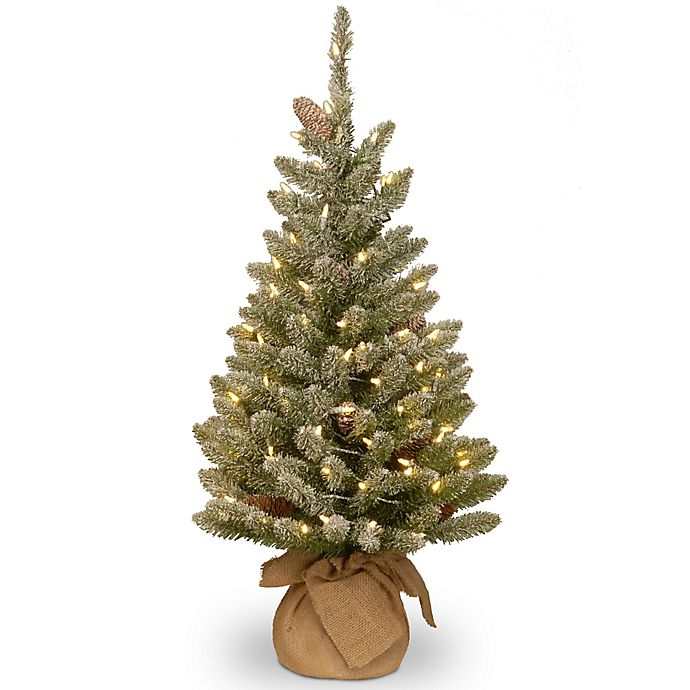 National Tree 3 Foot Battery Operated Snowy Concolor Fir Christmas
