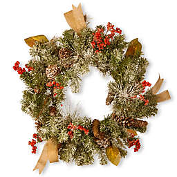 National Tree Company 24-Inch Snowy Christmas Wreath with Pine Cones