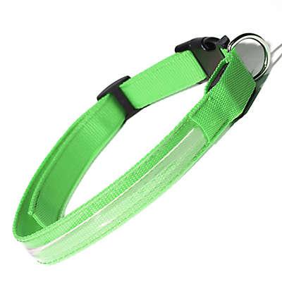 OxGord® Medium Flashing LED Dog Collar in Green