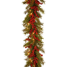 National Tree Company Decorative Battery-Operated 9-Foot Valley Pine Christmas Garland