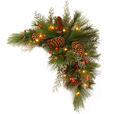 National Tree Company 30-Inch White Pine Kissing Ball with Warm White LED Lights