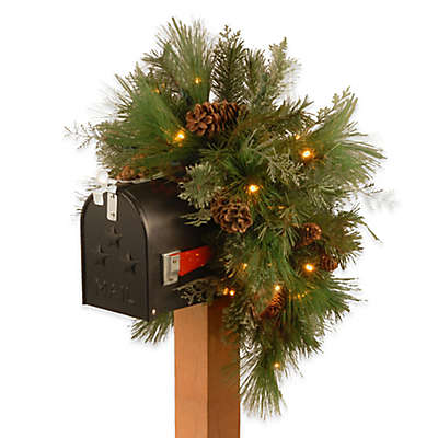 National Tree Company 36-Inch White Pine Pre-Lit Mailbox Swag with Warm White Lights