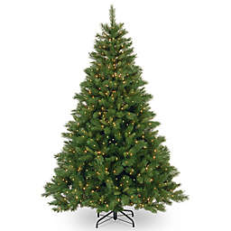 National Tree Company Winchester Pine Pre-Lit Christmas Decorations