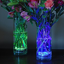 Multi-Color Submersible Battery Operated LED Lights with Remote Control (Set of 2)