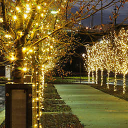 100 mini solar powered string lights in cool white
