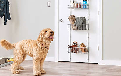 0326830acc Don't Let Your Mudroom Go to the Dogs