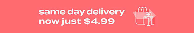 same day delivery now just $4.99