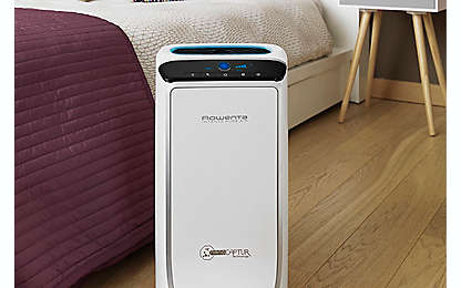 Go-To Guide: Air Purifiers