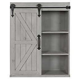 Kate and Laurel™ Cates Decorative Wood Wall Storage Cabinet with Sliding Barn Door