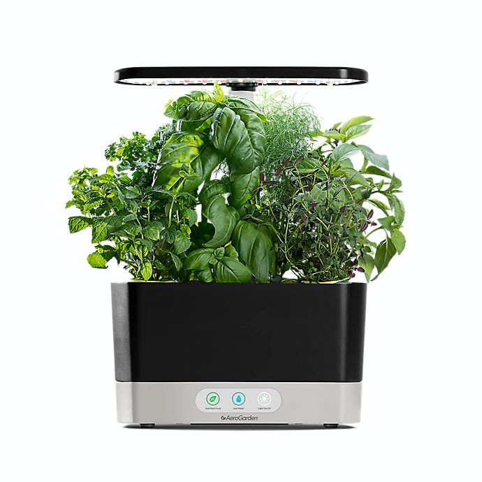 Alternate image 1 for AeroGarden™ Harvest with Gourmet Herb Seed Pod Kit in Black