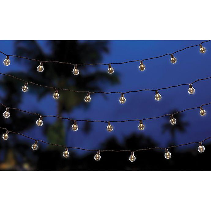 Alternate image 1 for Destination Summer 50-Count Café String Lights
