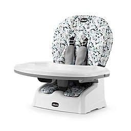 Chicco® Snack Booster Seat in Paint