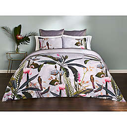 Ted Baker London Pistachio Border Bedding Collection