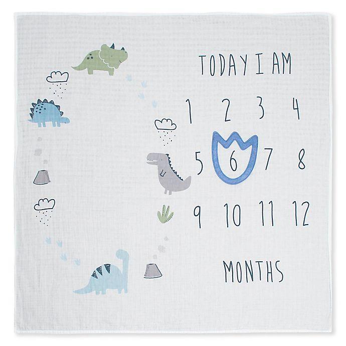Alternate image 1 for Gerber® Monthly Milestone Dinosaur Blanket in Ivory/Blue
