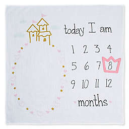 Gerber® Monthly Milestones Princess Blanket in Ivory
