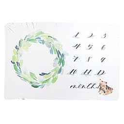 Copper Pearl™ Bear Milestone Knit Swaddle Blanket