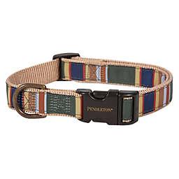 Pendleton® Woolen Mills Badlands National Park Dog Collar